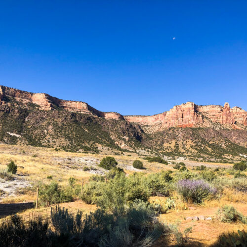 Check out the best things to do in Grand Junction, Colorado! This grand city in the desert has hiking, rafting, biking and even wild horses!