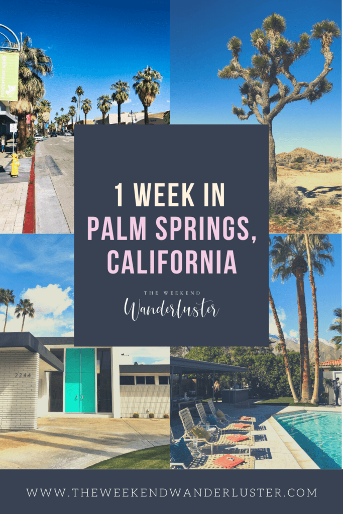 Things to do in Palm Springs, Palm Springs California, Guide to Palm Springs, Things to see in Palm Springs, Where to stay in Palm Springs, Where to eat in Palm Springs, Where to shop in Palm Springs, Joshua Tree National Park, Hiking in Palm Springs - The Weekend Wanderluster