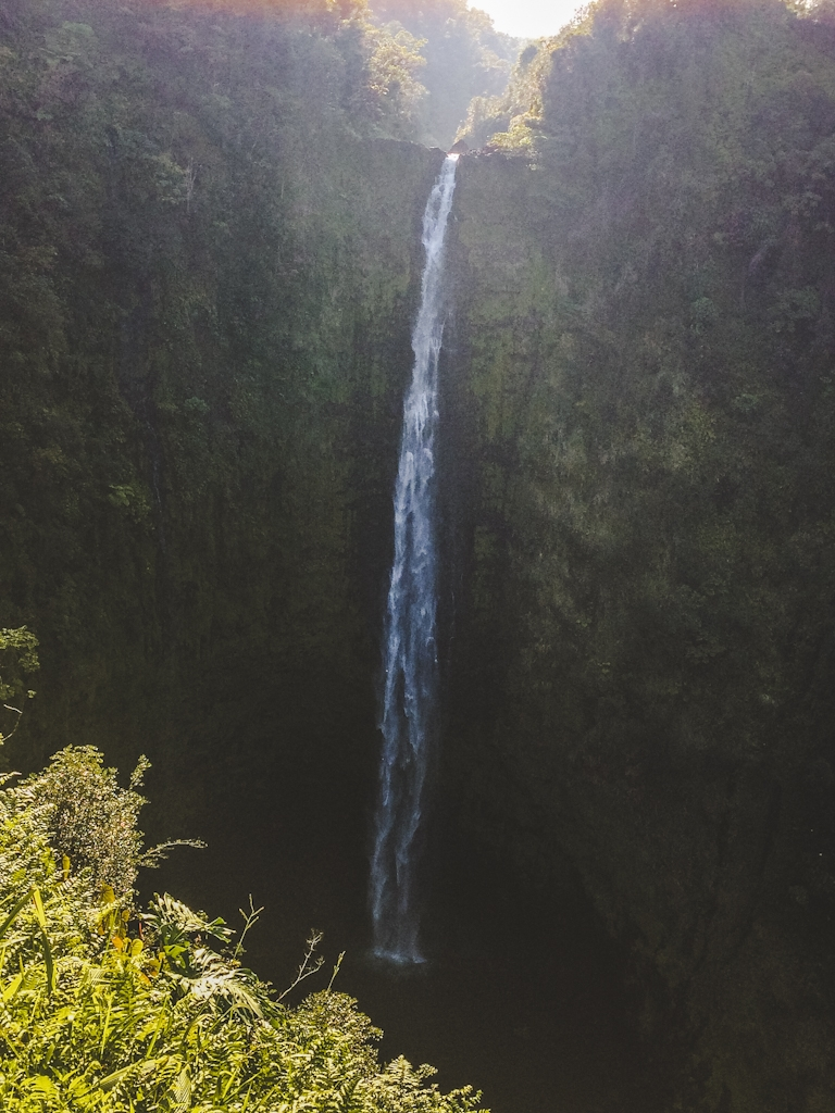 Akaka Falls is an incredible waterfall in a beautiful rainforest setting on the Hilo side of the Big Island
