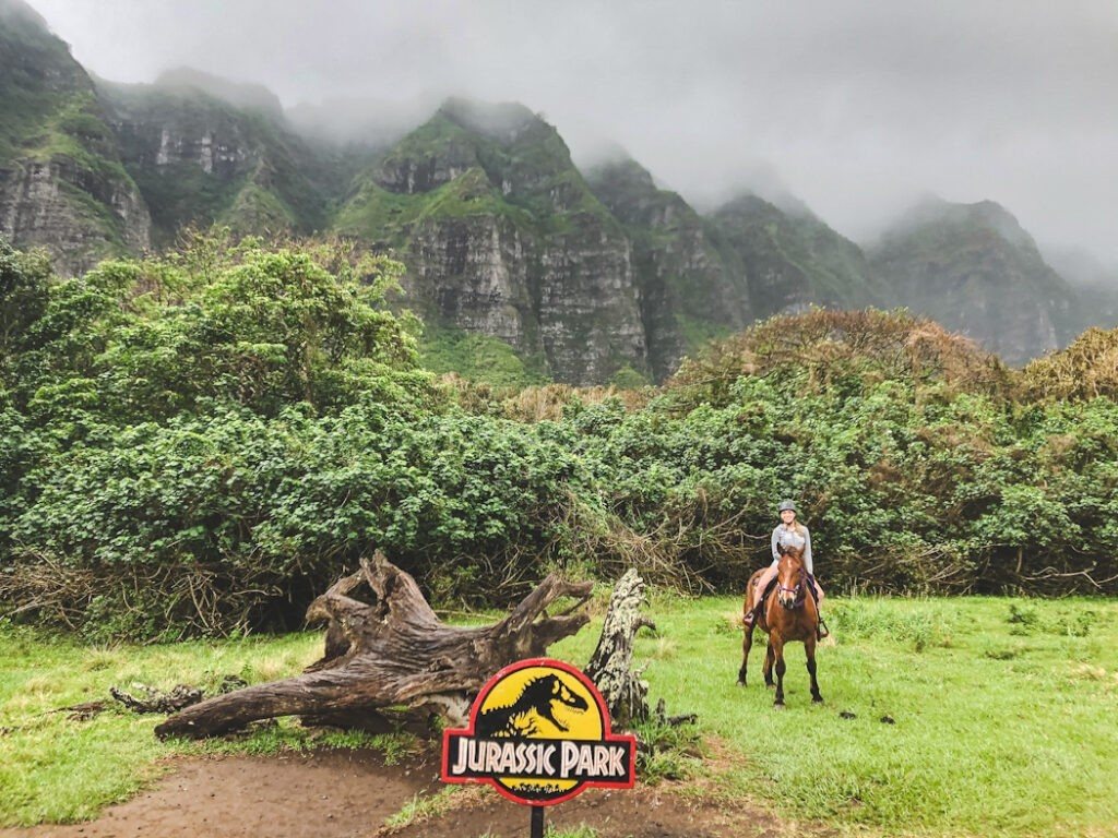 There are 12 tour options at Kualoa. When we visited we did the horseback ride, ziplining, and jungle tour and everyone loved their chosen tour!